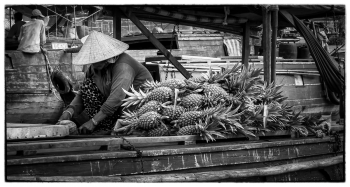 Mekong 13