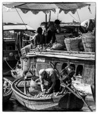 Mekong 23